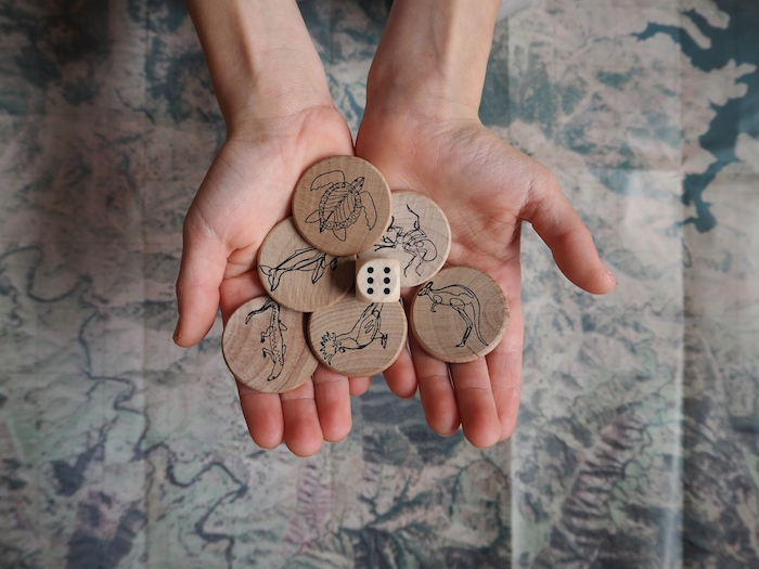 playing pieces The Map Game Australia