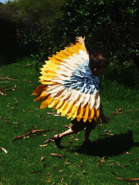 Wings Pari-Bourke